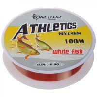 Леска FishPRO White Fish 100м, 0,25мм, 6,70кг, прозрачная